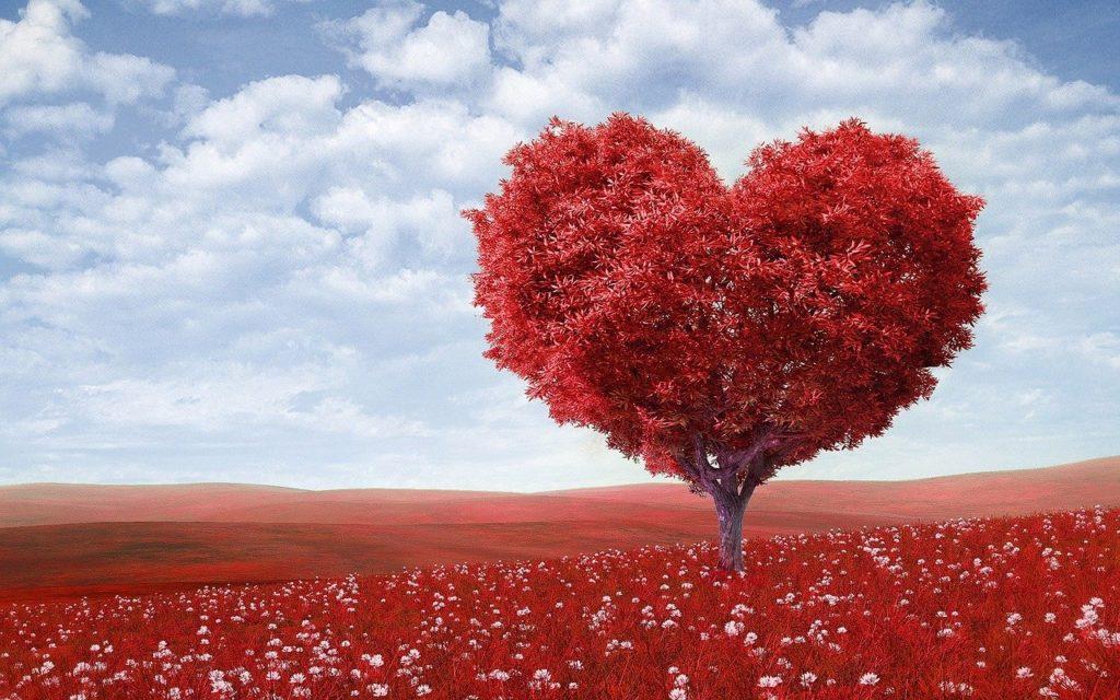 heart-shape, tree, red